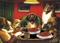 Hunde im Restaurant-Titel