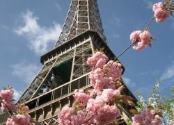 Paris 068