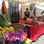 Obst & Gemüse & Blumen