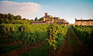 Wein-Festung Soave