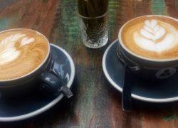 Cappuccino Aniis