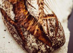 Brot Bristol Paris
